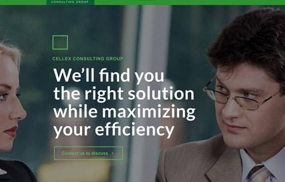 CellEx Consulting